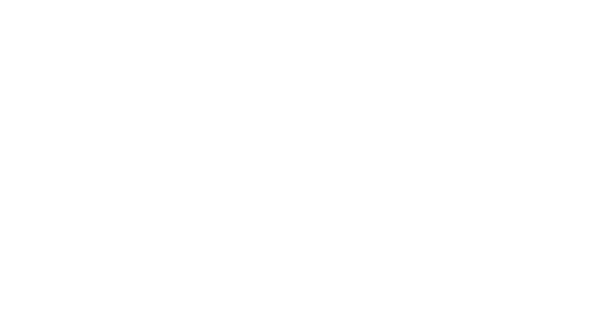 LOS-SOLES-GROUP-logo